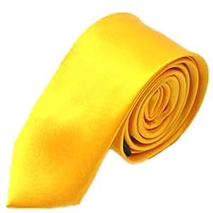 Tinaa - Corbata para Hombre, Color Liso, Estilo clásico, Regalo ...