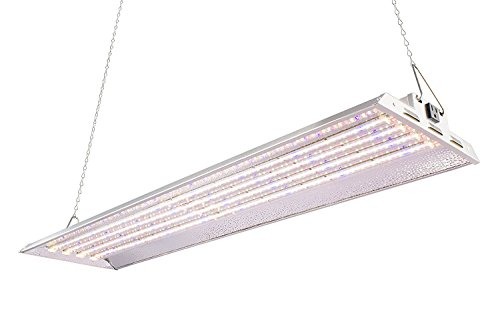 100W Watt Led Grow Light in US - 4
