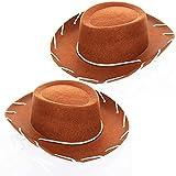 GIFTEXPRESS Felt Cowboy Hat, Western Cowgirl Hat