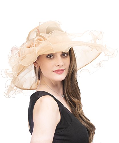 SAFERIN Women's Organza Church Kentucky Derby Hat Feather Veil Fascinator Bridal Tea Party Wedding Hat (SF4-Champagne New) -