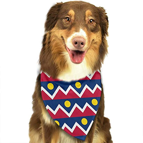 FRTSFLEE Dog Bandana Flag of Denver Colorado Scarves Accessories Decoration for Pet Cats and Puppies]()