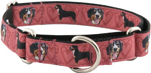 Country Brook Design Red Entlebucher Mountain Ribbon Martingale Collar - Medium