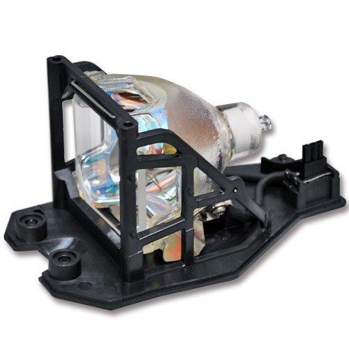 C40 Sp Lamp - 1