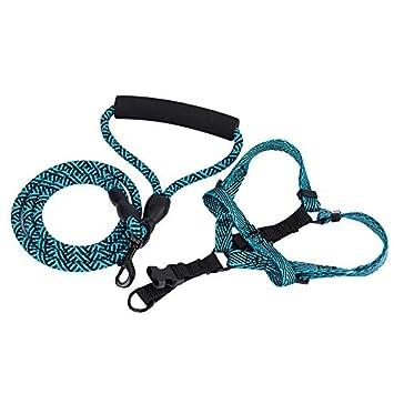 Amigos for siempre extremadamente durable Slip perro de la cuerda ...