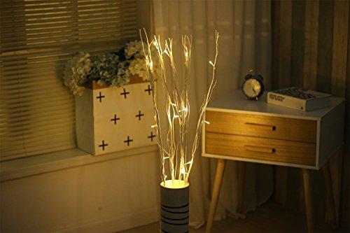 White Led Branch Lights