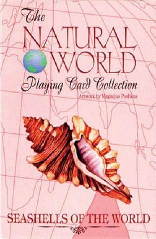 - ToyPlaya Fun Games! Seashells of The Natural World Art Deck of Playing Cards