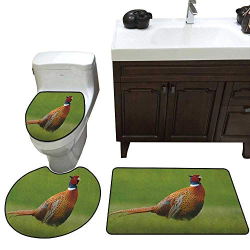 Bird Bath Toilet mat Set Common Pheasant with Long Tail on The Green Grass Meadow Habitat Czech Republic Toilet Rug and mat Set Green Orange Red (Pinnacle Green Grass)