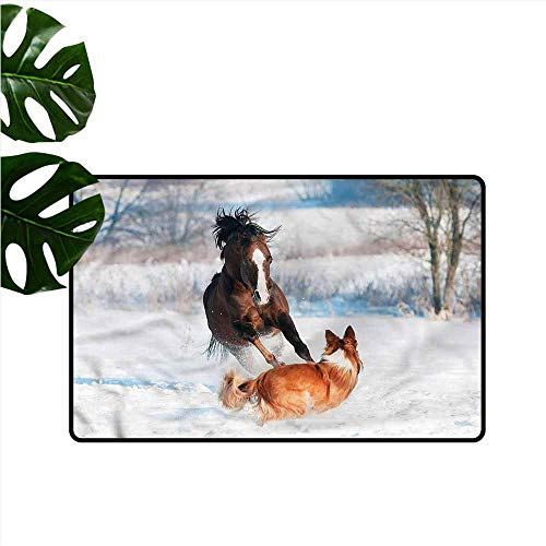 DUCKIL Interior Door mat Horse Welsh Pony and Border Collie All Season General W16 xL24
