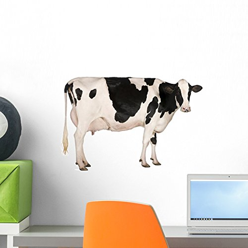 Wallmonkeys Holstein Cow Wall Decal Peel and Stick Graphic W