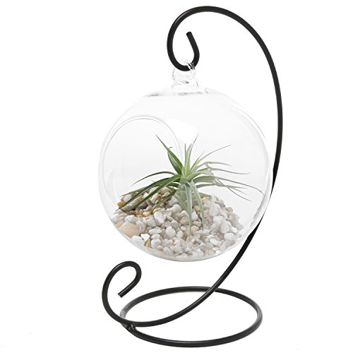MyGift Charming Clear Glass Hanging Planter Terrarium Globe Tea Light Candle Holder Lantern w Black Metal Stand