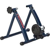 Schwinn 1031R Magnetic H Frame Bike Trainer