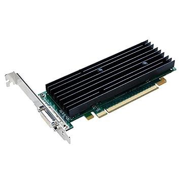 Tarjeta gráfica NVIDIA Quadro NVS290 256 MB PCI-Express ...