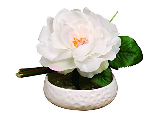 Silk White Rose with Artificial Bamboo in Faux Water - Liquid Illusions (Ceramic Soap Dish) ()