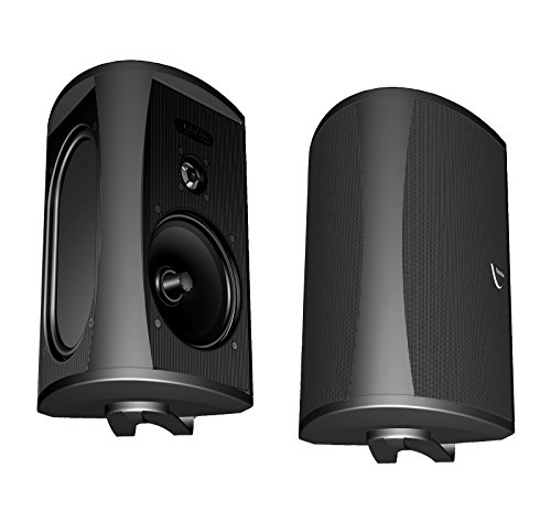 Definitive Technology AW5500 Outdoor Speakers – (Pair) Black