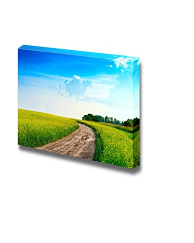 Peaceful Summer Rural Landscape in Wide Field with Country Road Wall Decor ation
