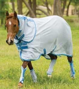 Amigo Fly Boots Horse Azure Blue/Baby Blue