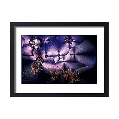 Media Storehouse Framed 24x18 Print of Cristal d acide ascorbique en microscopie (15451317)
