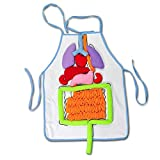 Creative Design School Education Teaching Aids Simulation Human Organs Diagram Apron For Children's Basic Skills Development Toy