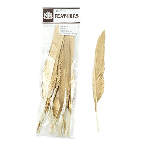Zucker Feather Products Gilded Duck Pointer Feather, Gold ()