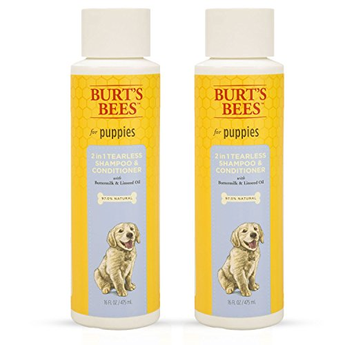 Burt's Bees for Dogs Tearless 2 in 1 Shampoo and Conditioner for Puppies with Buttermilk & Linseed Oil, 16 Ounces (Pack of 2) (Shampoo Dog Tear)