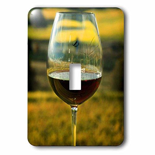 Northwest Switchplate - 3dRose lsp_93801_1 Wine Glass, Willamette Valley Vineyards, Oregon-US38 JMI0817-Janis Miglavs Single Toggle Switch Multicolor