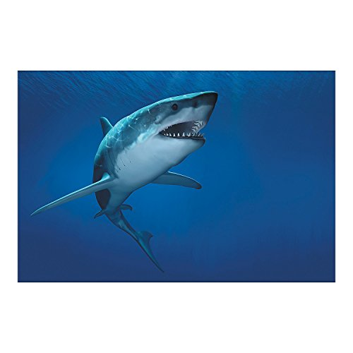 Fun Express - Shark Backdrop Banner - Party Decor - Wall Decor - Preprinted Backdrops - 3 Pieces -