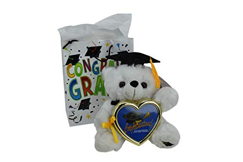 Graduation Gift Teddy Bear Cap Diploma Holding Picture Frame with Congratulations Gift Bag (Black Cap)