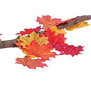 AmyHomie 300 Artificial Maple Leaves in a Mixture Colors Autumn Table Scatters for Fall Weddings & Autumn Parties, 6 2