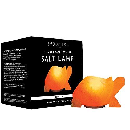 Turtle Salt (Evolution Salt - Turtle Crystal Himalayan Salt Lamp 6-7 lbs.)