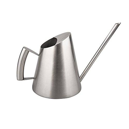 Painted Watering Can (IMEEA 32Oz Brushed Solid SUS304 Stainless Steel Watering Can Modern Style Watering)