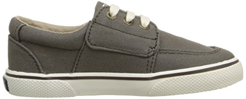 Sperry Ollie Alternative Closure Sneaker (Toddler/Little Kid) Truffle