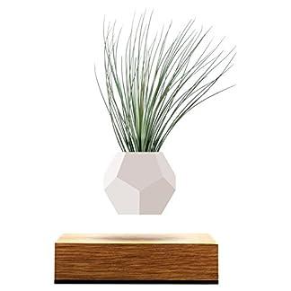 FLYTE Lyfe Vaso fluttuante, Legno, Bianco, 15x 15x 15cm