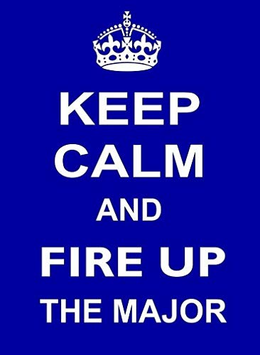 Sylty Keep Calm and Fire Up The Major Metal Sign 12x16 for sale  Delivered anywhere in USA