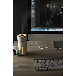 FREE AND HEALTHY LIFE Essential Oil Diffuser Humidifier (Green Accent) USB portable Car Office Nightstand Aromatherapy Travel LED Light 300ml