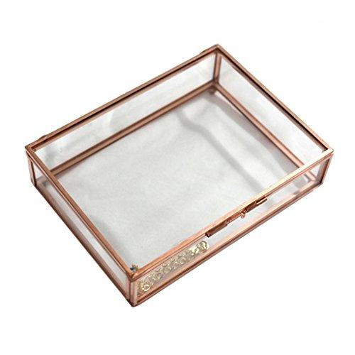 MonkeyJack Modern Clear Glass Cuboid Geometric Terrarium Jewelry Box Succulent Plants Box - Rose Gold, M