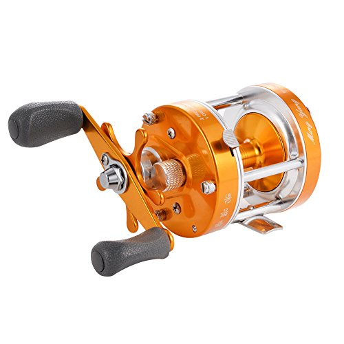 Isafish baitcasting reels conventional inshore and for Freshwater fishing reels