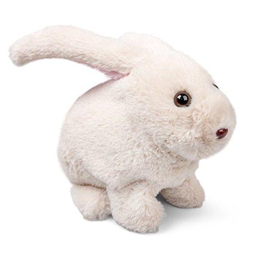 Rabbit - Hoppy Bunny