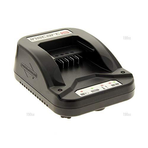 1182041360 - Cargador de batería para cortacésped GGP ...