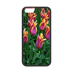 High Quality Phone Case For Apple Iphone 6 Plus 5.5 inch screen Cases -tulip pattern-LiuWeiTing Store Case 9