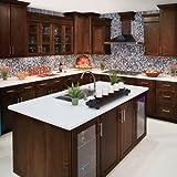 10x10 Tuscany Shaker Espresso Kitchen