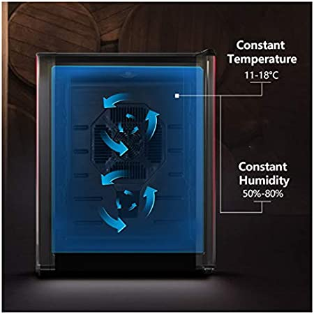 LLZH Refrigerador Enfriador de Vino, Vinoteca Termoeléctrica, Mini Refrigerador para Vinos de Encimera, Temperatura y Humedad Constantes,12 Bottles