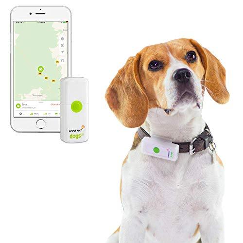 Weenect Dogs 2 – El collar GPS para perros más pequeño del mundo