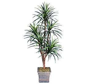 one 6 39 yucca artificial trees with 5 heads