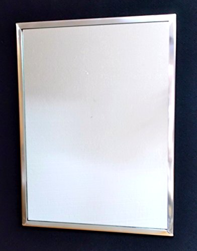 SeeAll Stainless Steel Framed Mirror, 18