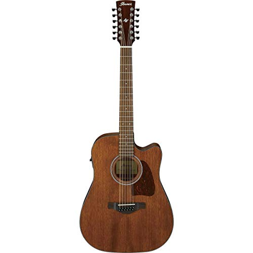 Ibanez AW5412CE - Open Pore Natural