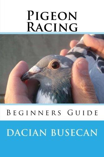 Pigeon Racing: Beginners Guide