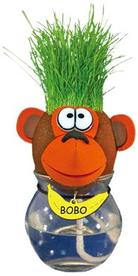 Grow A Head 1105332 - Maceta y semillas para plantar, diseño de mascota