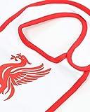 Liverpool FC 3 Pack Cute Baby Dribbler Bibs