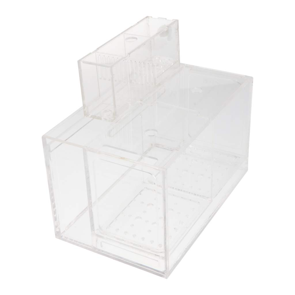Flameer Acrylic Acclimation Box Fish Breeder Nursery Isolation Tank Fish Accessory - 2 Grid by Flameer