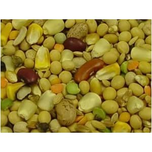 Volkman Seed Featherglow Fancy Soak & Simmer 2lb 103